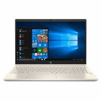 Laptop HP Pavilion 15-cs3063TX (8RK42PA) (15 inch FHD/i7-1065G7/8GB/512GB SSD/MX250/Win10)